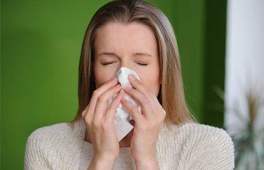 Кашель, чихание, насморк без температуры: аллергия или ОРВИ?   Деринат