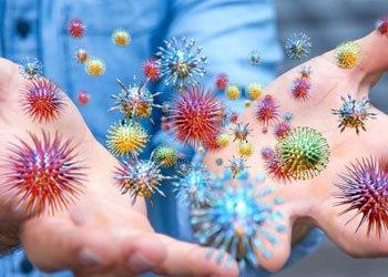 Вирусы вызывающие ОРЗ | Деринат